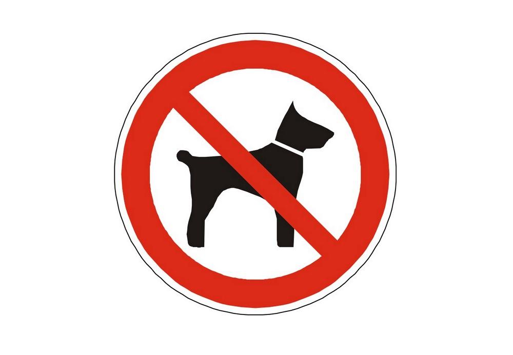 Hundehoelle Daenemark