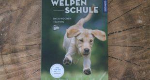 Welpenschule Buch