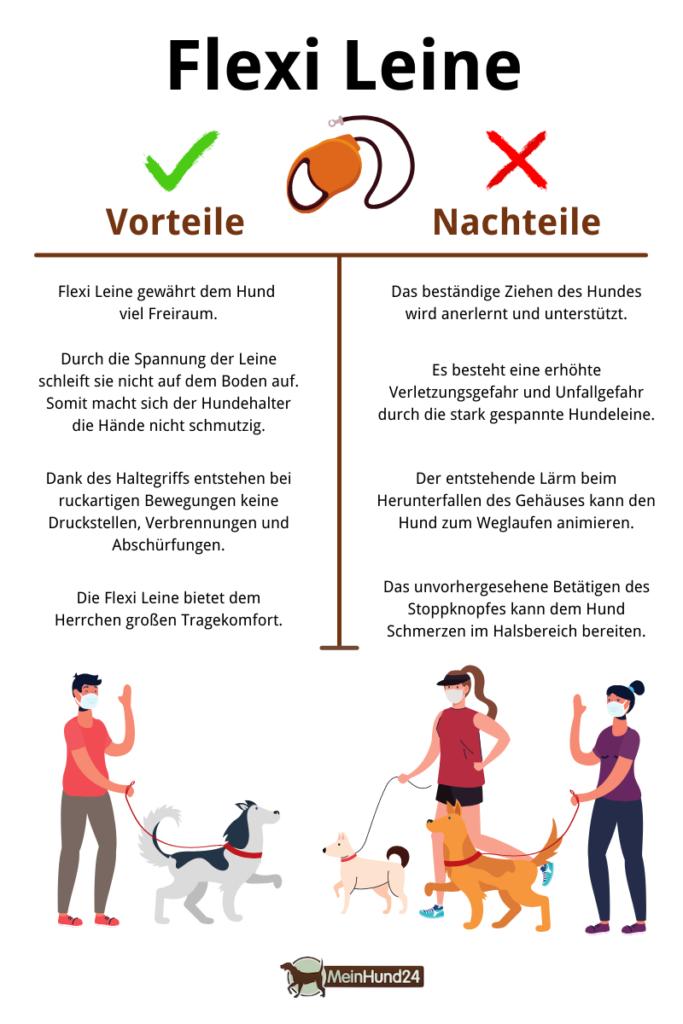 Flexi Leine Rollleine Infografik