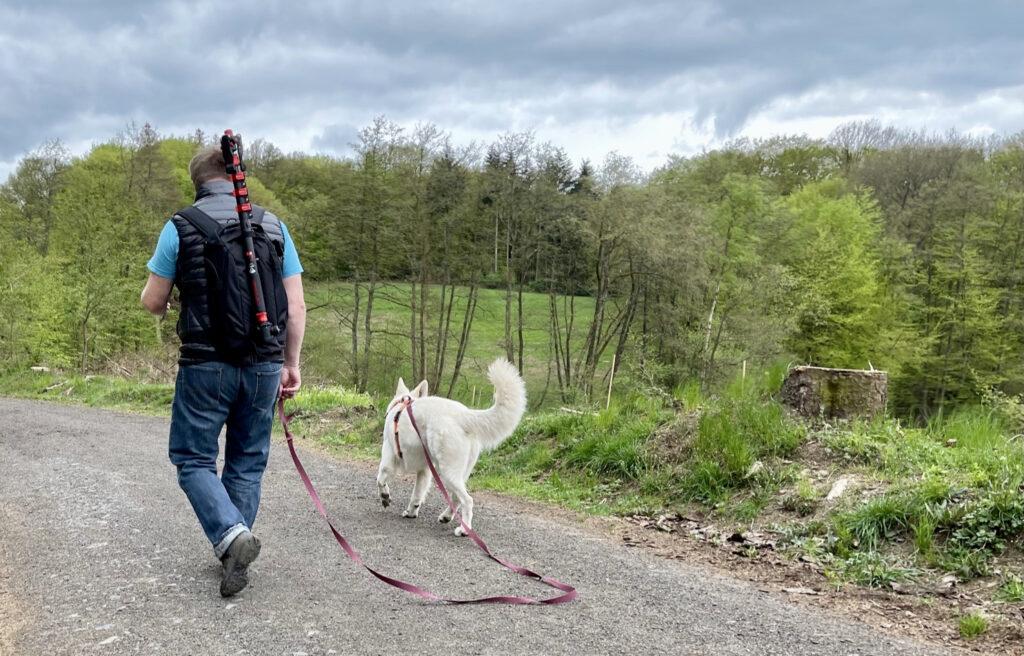 optimale Länge der Hundeleine