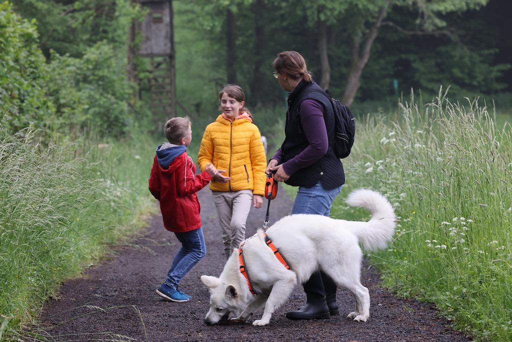 Bewegung mit dem Hund hilft beim Abnehmen